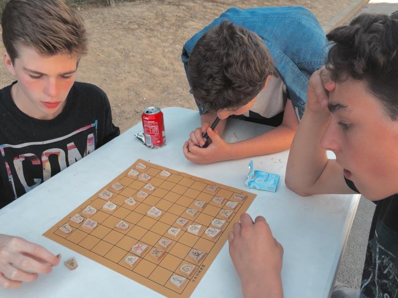 Et toujours le shogi pour changer des échecs !